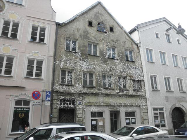 ( Künstler Marc Köschinger; Schmetterlingshaus in Eichstätt)