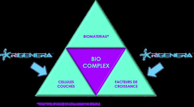 Triangle de l'ingénierie tissulaire avec Rigenera