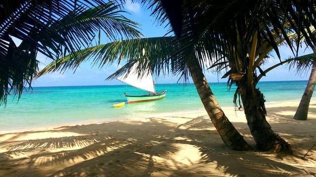 Plage sablonneuse sur la Mer des Caraïbes