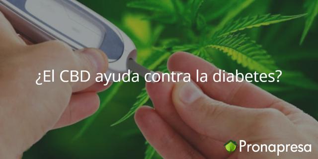 ¿El CBD ayuda contra la diabetes?