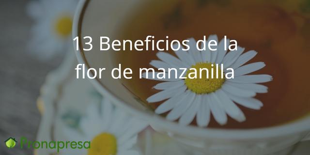 13 beneficios de la manzanilla para la salud