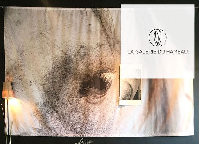 La Galerie du Hameau expose les photographies d'Elizabeth Baille