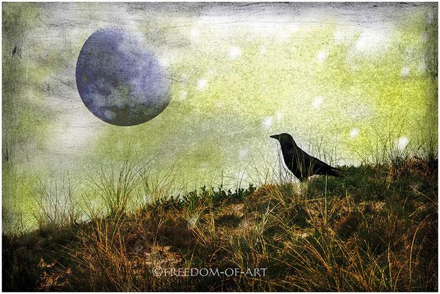 Der Rabe und der Mond