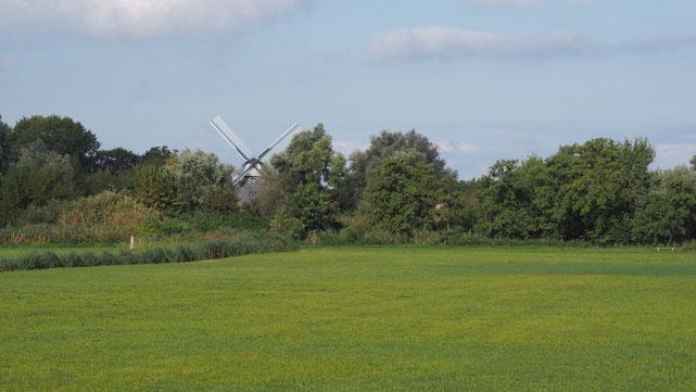 Bild: Blick auf die alte Mühle in Ahrenhoop