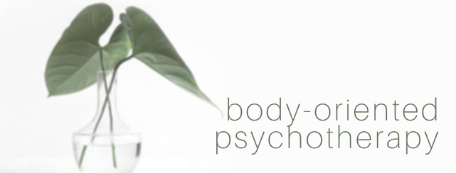 Body-oriented psychotherapy is a combination of talk therapy, somatic therapy, bodywork, breathwork, deep breathing and physical techniques, sich as touch and relaxation exercises.