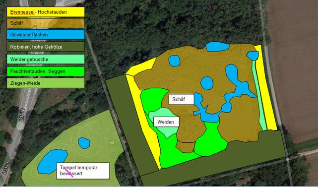 Lorscher Sandgrube - vorhandene Biotoptypen nach Luftbild (Drohnenbefliegung)