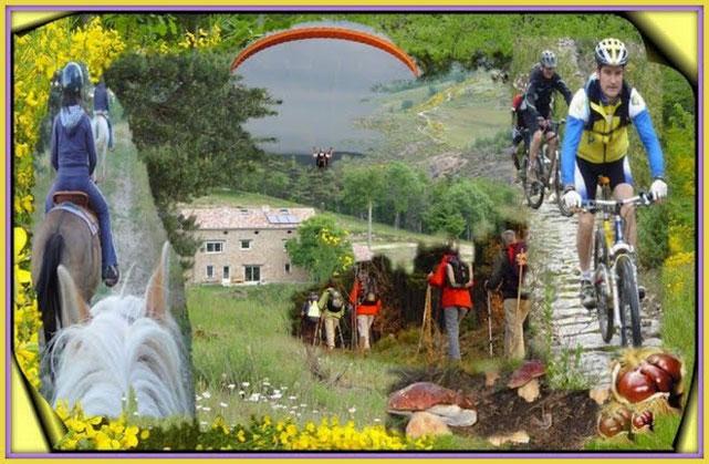les activités diverses au gîte vtt,marche a pied ,cheval,parapente,cueillette de champignons,baignade ,escalade,peche en riviere....