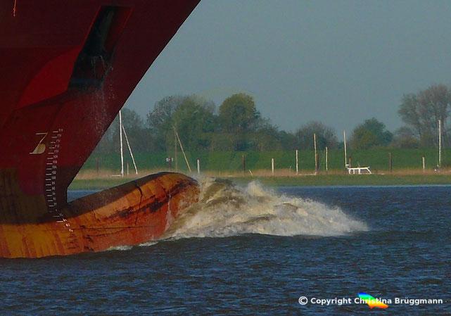 Ab sofort Tempolimit auf der Elbe