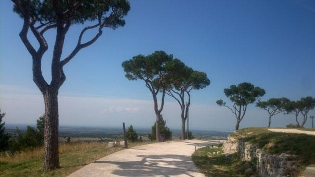 Ausblick vom Castel del Monte auf die Murgia