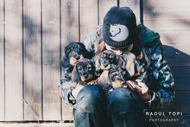 """© Raoul Topi Photography (Nallo, Nuck, Nahla, Nuxe, Nimrod (""""Rowdy"""") & Nurmi)"""