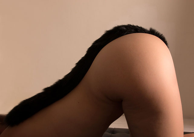 buttplug with long tail butt plug long tail black tail plug long black tail ass plug black anal plug with tail buttplug met lange staart zwarte anaal plug zwarte staart plug zwart zwarte buttplug staart extra lange staart lang zwart
