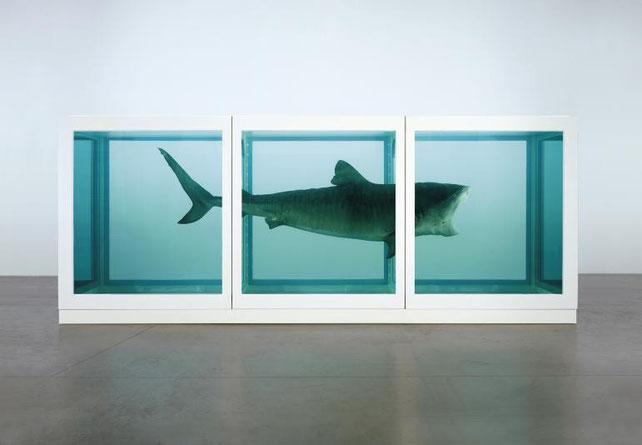 Las peculiares obras de Damien Hirst