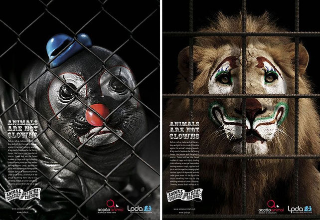 'Animals are not clowns' (Los animales no son payasos)