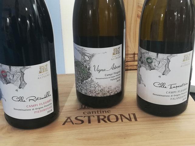 Vinitaly Napoli Cantine Astroni Etesiaca itinerari di vino