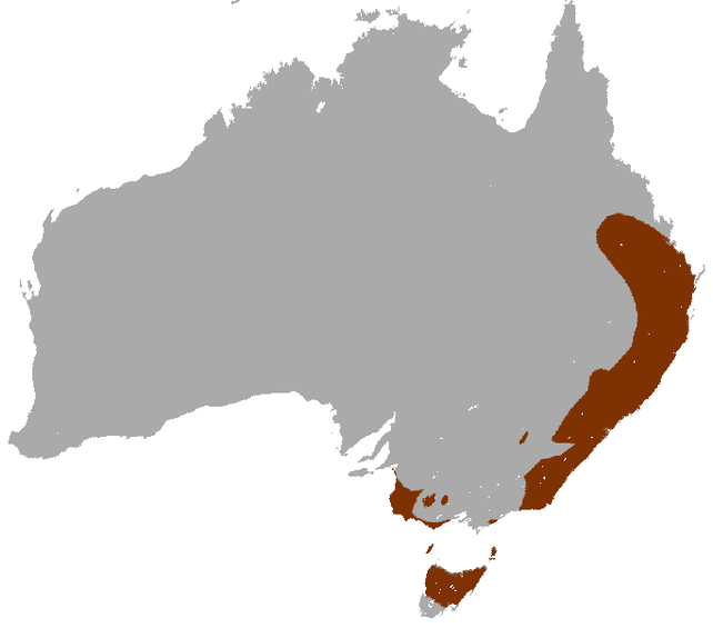 «Red-necked Wallaby area» par IUCN Red List of Threatened Species, species assessors and the authors of the spatial data... Sous licence CC BY-SA 3.0 via Wikimedia Commons - http://commons.wikimedia.org/wiki/File:Red-necked_Wallaby_area.png#/media/File: