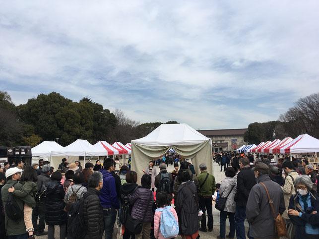 東京藝術大学の学生・卒業生による生演奏も大好評でした。