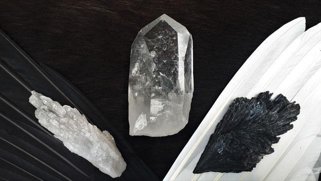 """""""ANGEL WINGS"""": Rechts schwarzer Disthen auf Schwanenschwinge, links Bergkristall auf Rabenschwinge."""
