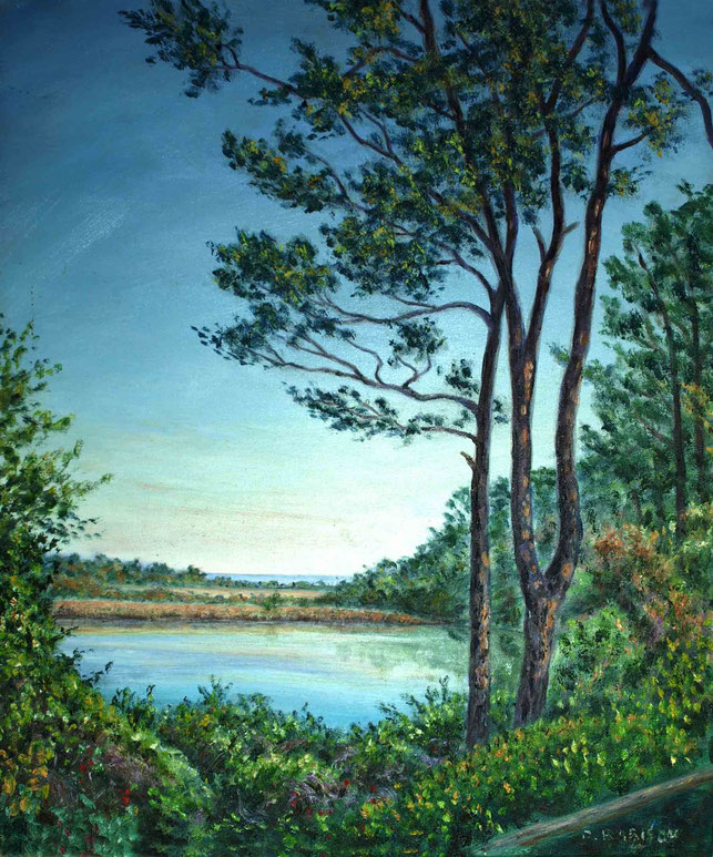32. Myrtle Beach Centre - lake view. Courtesy of Theus & Rachel Malmberg