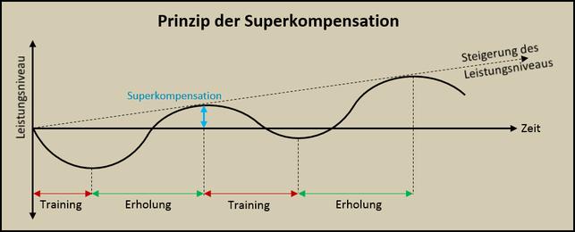 Modell der Superkompensation - Steigerung des Leistungsniveaus beim Laufen