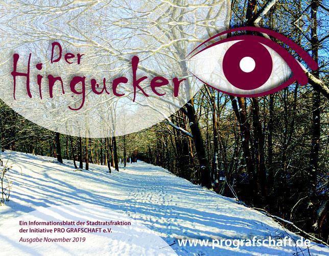 Informationsblatt der Stadtratsfraktion der Initiative Pro Grafschaft e.V.