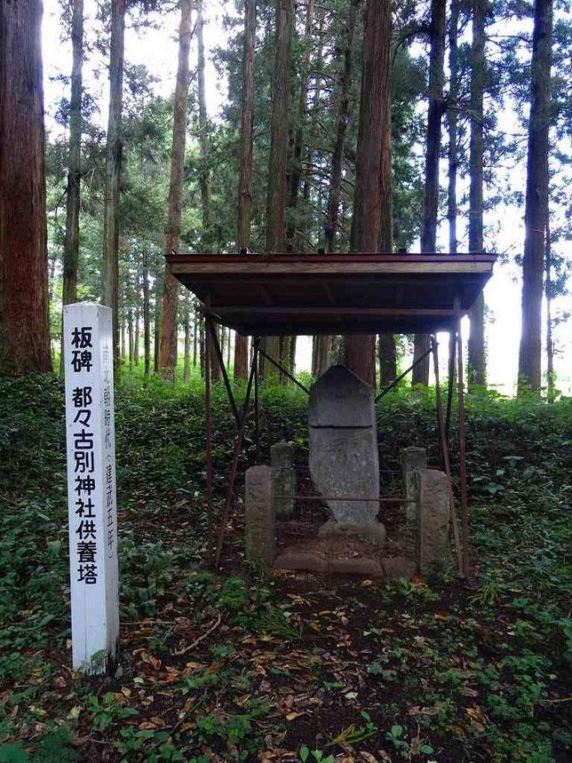 陸奥一之宮 馬場都々古別神社(ばばつつこわけじんじゃ)