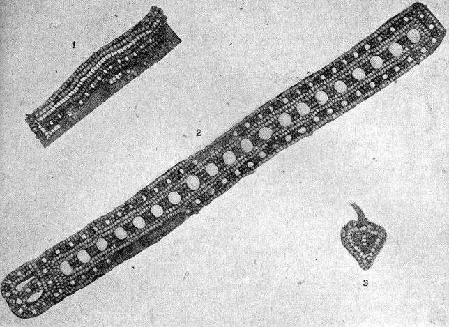 Рис. 7. 1 —вышивка на воротнике нижней рубашки; 2 —воротник верхней одежды; 3 — вышивка на обуви (этербесах).