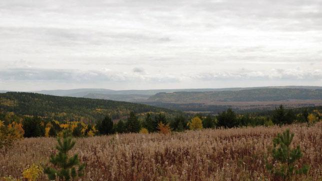 Вид на долину реки Лены в районе с.Большие Голы. Фото Алексея Зуева