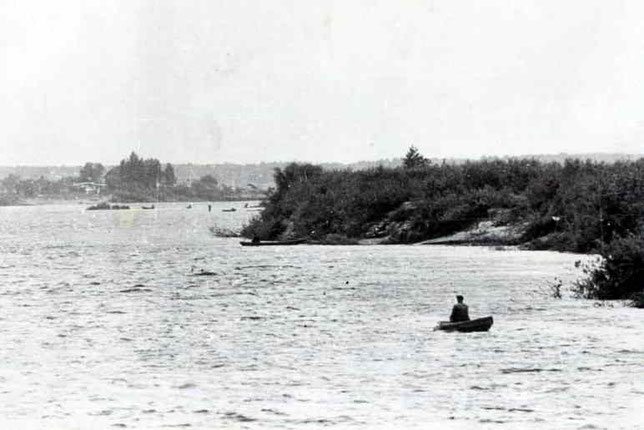 Днепр у села Глущец. На этом месте Ф.К. Попов переплыл реку.