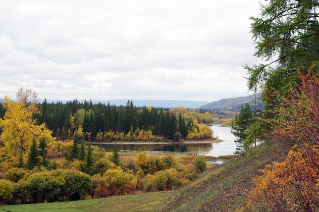 Вид на реку Лену между с.Большие Голы и Качугом. Фото Алексея Зуева