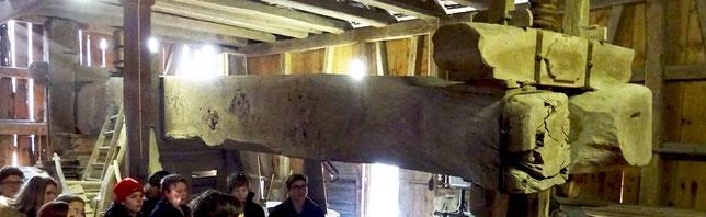 der Torggelbaum ist 19m lang und wiegt 10 Tonnen!