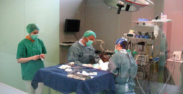 Weichteilchirurgie