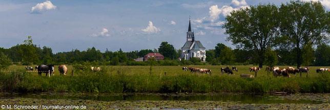 Karpartenvorland im Südosten Polens mit dem Wohnmobil