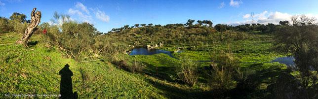 Spanien Naturpark Cornalvo Naturparadies