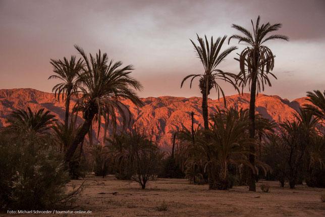 Tafraoute und die blauen Steine in Marokko