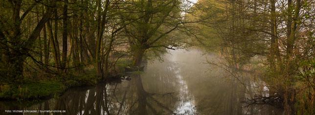 Frühmorgens an einem der vielen Kanäle im Spreewald