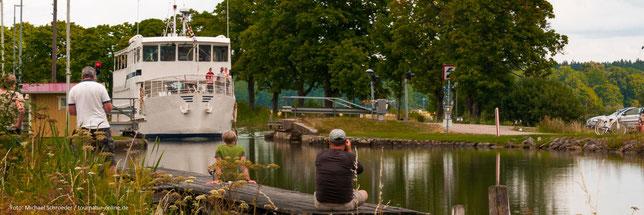 Zwei Seeadler beobachten das Geschehen am Roxen-See