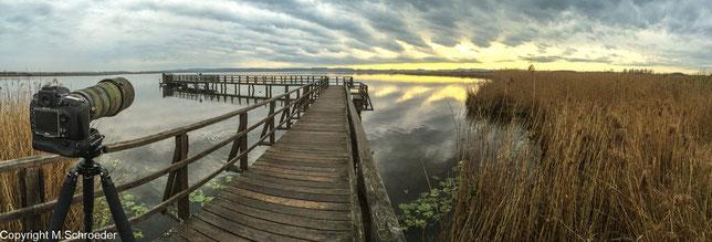 morgendlicher Ausflug mit Kamera an den See
