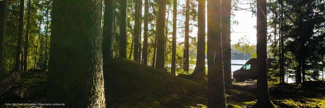 Ryd: kleiner Parkplatz an einem Waldsee