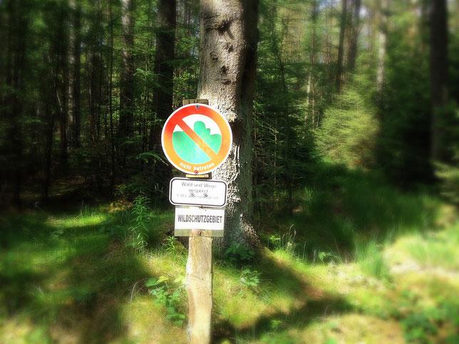 ein Riesenumweg wegen Wald- und Wildschutz