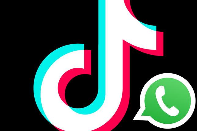Cómo poner videos de TikTok en estados de WhatsApp
