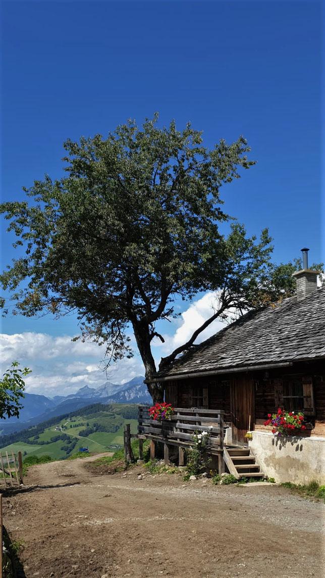 Almhütte in Salzburg