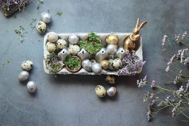 Kresse in der Eierschale mit Osterdekoration