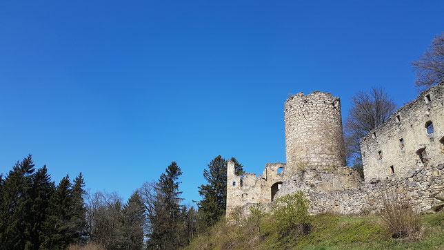 Burg Prandegg