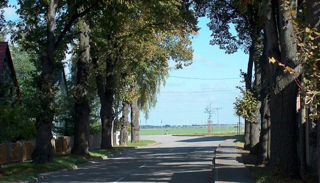 Grundschule Siersleben
