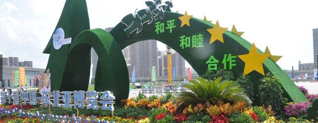 Northeast Asia Expo - ChangChun, China