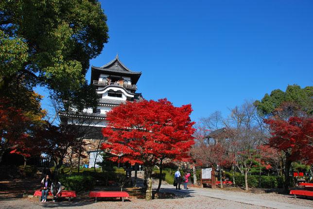 犬山城 紅葉