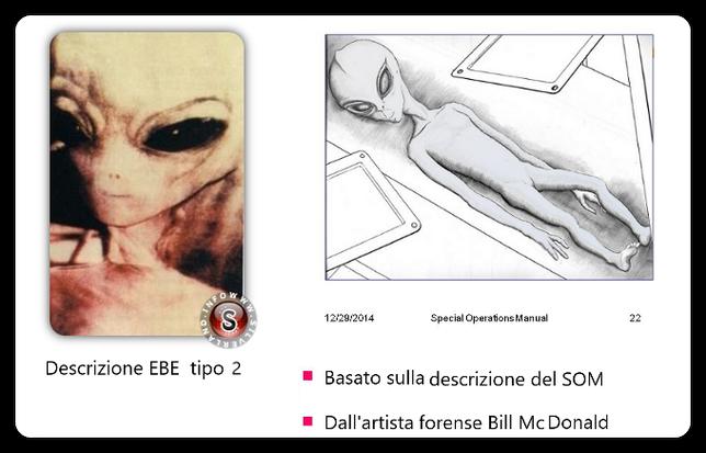 Probabile aspetto di un alieno Ebe tipo 2