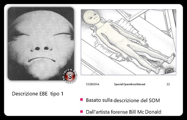Sopra, in una foto di provenienza anonima, il probabile aspetto di un alieno EBE di tipo 1