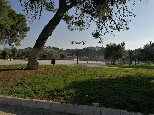 Mount of Olives is seen on the horizon from the Temple Mount