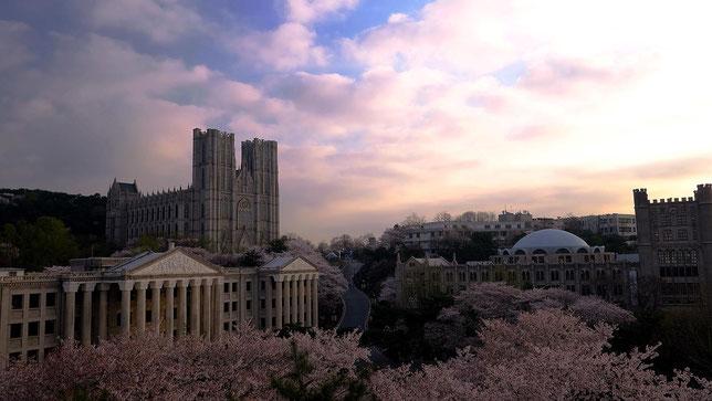 Đại học Kyunghee